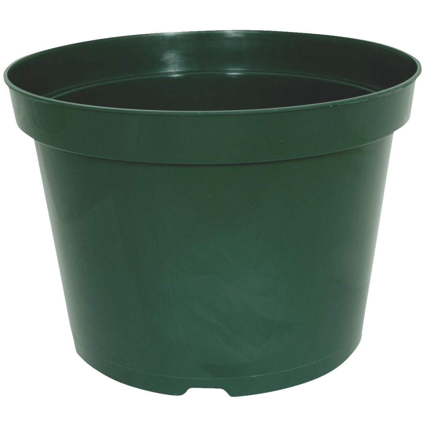 Myers 6 In. H. x 8 In. Dia. Green Plastic Flower Pot Image 1